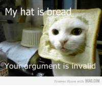 My hat is bread  Your argument is invalid  Forever Alone with 9GAG.COM This cat is stealing my idea.