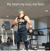 My heart,my soul, my feels My deadlifts from December 30th 2015 until today. My goal was to pull 600 before the year is over, did not happen 😟. I guess I'll just have to settle with 585 for now (beginning of the year 495). I got really hyped before pulling and didn't really set up properly, almost strained my left pec as you can see me holding my chest. Hopefully I didn't do any serious damage. I didn't hit the numbers I wanted to hit like benching 350 and squatting 500. My PR on bench is 325 (beginning of the year 260) and 455 squats (beginning of the year 395). Next week, I'm just going to take a week off from lifting or maybe longer and hopefully my elbow tendinitis-pec strain will go away. Sucks I gotta work this weekend but happy New Years guys! Don't drink and drive cuz you can spill your beer
