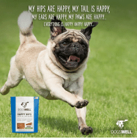 Healthy hips are happy hips–and everyone knows hips don't lie! Treat your dog to Dogswell Happy Hips jerky treats with glucosamine and chondroitin to support hip and joint health.: MY HIPS ARE HAPPY My TAIL IS HAPPY  MY EARS ARE HAPPY My PAWS ARE HAPPY  EVERYTHING IS HAPPY HAPPY HAPPY  DOGSWELL  HAPPY HIPS  JERKY  DOGSWELL Healthy hips are happy hips–and everyone knows hips don't lie! Treat your dog to Dogswell Happy Hips jerky treats with glucosamine and chondroitin to support hip and joint health.