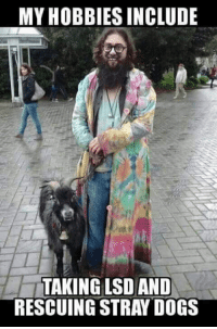 #Hippies: MY HOBBIES INCLUDE  TAKING LSD AND  RESCUING STRAY DOGS #Hippies