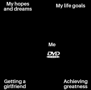 Meirl: My hopes  and dreams  My life goals  Me  DVD  VIDE O  Getting a  girlfriend  Achieving  greatness Meirl