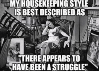 Memes, Struggle, and Best: MY HOUSEKEEPING STYLE  IS BEST DESCRIBED AS  THERE APPEARSTO  HAVE BEEN A STRUGGLE