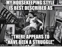 Memes, Been, and 🤖: MY HOUSEKEEPING STYLE  ISBESTDESCRIBED AS  TTHERE APPEARS TO  HAVE BEEN ASTRUGGLE  ng flip com