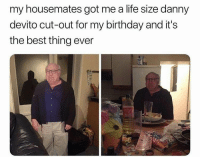 housemates: my housemates got me a life size danny  devito cut-out for my birthday and it's  the best thing ever