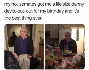 Birthday, Dank, and Life: my housemates got me a life size danny  devito cut-out for my birthday and it's  the best thing ever Birthday Present by Vuynjou FOLLOW 4 MORE MEMES.