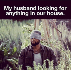 Dank, House, and Husband: My husband looking for  anything in our house.  a perfectishmom Via: @Perfectish Mom