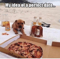 Dank, Dating, and Date: My idea of a perfect date