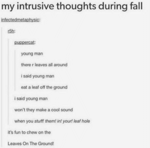 Fall, Saw, and Tumblr: my intrusive thoughts during fall  infectedmetaphysic:  r5h:  young man  there r leaves all around  i said young man  eat a leaf off the ground  i said young man  won't they make a cool sound  when you stuff! them! in! your! leaf hole  it's fun to chew on the  Leaves On The Ground! The first tumblr post I ever saw has gotten a great addition