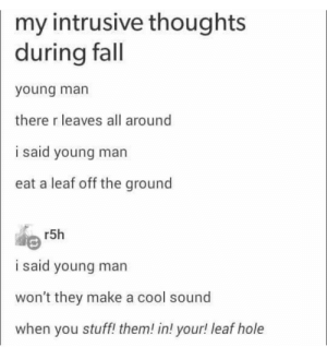 Fall, Best, and Cool: my intrusive thoughts  during fall  young man  there r leaves all around  i said young man  eat a leaf off the ground  r5h  AR  i said young man  won't they make a cool sound  when you stuff! them! in! your! leaf hole It's the best season