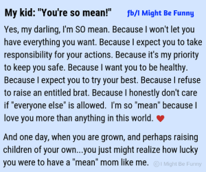 "Children, Dank, and Funny: My kid: ""You're so mean!""  fb/I Might Be Funny  Yes, my darling, I'm SO mean. Because I won't let you  have everything you want. Because l expect you to take  responsibility for your actions. Because it's my priority  to keep you safe. Because I want you to be healthy.  Because I expect you to try your best. Because I refuse  to raise an entitled brat. Because I honestly don't care  if ""everyone else"" is allowed. I'm so ""mean"" because  love you more than anything in this world.  And one day, when you are grown, and perhaps raising  children of your own...you just might realize how lucky  you were to have a ""mean"" mom like me. I Might Be Funny SO. MEAN.  (via I Might Be Funny)"
