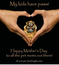 To those celebrating Mother's Day today. Wishing you all a wonderful day and that you get even more love from your furkids today. They are so grateful to have you for their mom. #Reiki #AnimalReiki #MothersDay: My kids have paws!  Happy Mother's Day  to all the pet moms out there  OFacebook SurfDogRicochet To those celebrating Mother's Day today. Wishing you all a wonderful day and that you get even more love from your furkids today. They are so grateful to have you for their mom. #Reiki #AnimalReiki #MothersDay