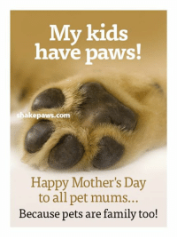 You're doing a great job! :): My kids  have paws  shakepaws.com  Happy Mother's Day  to all pet mums..  Because pets are family too! You're doing a great job! :)