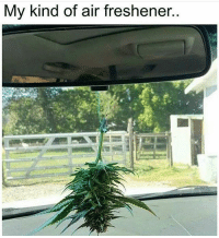 Memes, 🤖, and Air: My kind of air freshener