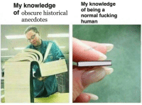 Fucking, Historical, and Knowledge: My knowledge  of obscure historical  My knowledge  of being a  normal fucking  human  anecdotes  ueen  kyled