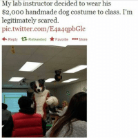 Memes, Twitter, and 🤖: My lab instructor decided to wear his  $2,000 handmade dog costume to class. I'm  legitimately scared.  pic.twitter.com/E4a4qpbGlc  Reply Retweeted r Favorite More