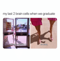 School, Brain, and Girl Memes: my last 2 brain cells when we graduate  SALADS  We got away with it  As usual. I don't miss high school