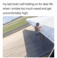 @alienwithnojob is the best page you're not following 😂: my last brain cell holding on for dear life  when i smoke too much weed and get  uncomfortably high: @alienwithnojob is the best page you're not following 😂