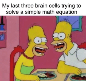 Brain, Math, and MeIRL: My last three brain cells trying to  solve a simple math equation Meirl