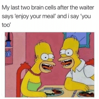 Brain, You, and Brain Cells: My last two brain cells after the waiter  says 'enjoy your meal' and i say 'you  too'
