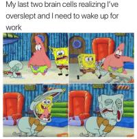 Work, Brain, and Happy: My last two brain cells realizing l've  overslept and Ineed to wake up for  Work  MasiPopal Happy Thursday y'all.. 😂🤙 https://t.co/OJhhhfMTZR