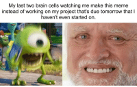 Meme, Brain, and Help: My last two brain cells watching me make this meme  instead of working on my project that's due tomorrow thatI  haven't even started on hahahaha help.