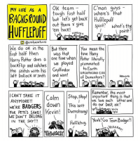 Gryffindor, Harry Potter, and Memes: MY LIFE AS A  OK team  C mon guys  tough first half where's that  BACKGROUND  get back Hufflepuff  out there give  Spirit?  What's the  em heck!  point?  HARGHHH  O (@emalyscartoons  We do ok in the But there  You mean the  first half then  Was that  time Harry  Harry Potter does a  e time when literally  backflip and catches  we played  plummeted  Gryffindor  to Earth  the snitch with his  left bollock or smth and won!  Unconscious COS  of Dementors?  Remember the most  I CAN'T TAKE IT  Calm  Stop,stop!  important thing is that  ANYMORE  we each other and  WERE BADGERS down  This isn't  FOR PETES SAKE! Kevin! Durmstrang!  o our best, ok?  youre  ight  WE DON'T BELONG  Yeah Go TeamBadget!!  IN THE SKY  YAAAAAy, Harry Potter and his left bollock.
