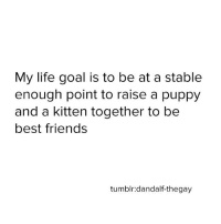 same tbh: My life goal is to be at a stable  enough point to raise a puppy  and a kitten together to be  best friends  tumblr: dandalf-thegay same tbh