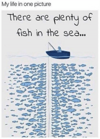 Touch Da Fishy: My life in one picture  There are plenty of  fish in the sea...