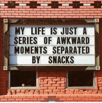Funny, Life, and Awkward: MY LIFE IS JUST A  SERIES OF AWKWARD  MOMENTS SEPARATED  BY SNACKS & waiting to see what @sarcastic_tendencies posts next!🙌🏻defo follow @sarcastic_tendencies 👈🏻👈🏻