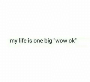 "Life, Wow, and Big: my life is one big ""wow ok"" Ha! Yep! That sums it up..."