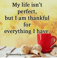 Womenworking.com: My life isn't  perfect,  but I am thankful  for  everything I have.  Womenworking.com Womenworking.com