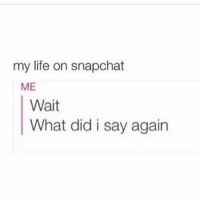 Accurate 😂😂😂: my life on snapchat  ME  Wait  What did i say again Accurate 😂😂😂