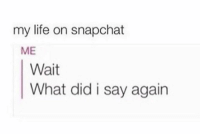 True 😂: my life on snapchat  ME  Wait  What did i say agairn True 😂
