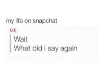 What Did I Say: my life on snapchat  ME  Wait  What did i say again