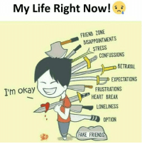 Fake, Life, and Break: My Life Right Now!  RIEND ZONE  DISAPPOINTMENTS  STRESS  CONFUSSIONS  O BETRAYAL  EXPECTATIONS  Im okay  FRUSTRATIONS  HEART BREAK  LONELINESS  OPTION  FAKE FRIEND