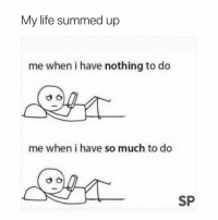 Life, Nothing, and Nothing to Do: My life summed up  me when i have nothing to do  me when i have so much to do  SP Literally 🙄