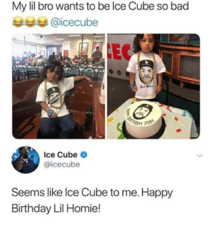 wholesome ice cube via /r/wholesomememes http://bit.ly/2JX5hI5: My lil bro wants to be lce Cube so bad  @icecube  EC  BRTH  JOSH  D  Ice Cube  @icecube  Seems like Ice Cube to me. Happy  Birthday Lil Homie!  HAppy B wholesome ice cube via /r/wholesomememes http://bit.ly/2JX5hI5