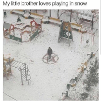 Don't follow @shitheadsteve if u need a safe space for memes: My little brother loves playing in snow Don't follow @shitheadsteve if u need a safe space for memes