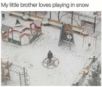 Memes, Snow, and Little Brother: My little brother loves playing in snow I hate snow