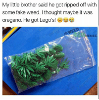 Poor kid 😔😂 🍁Follow ➡ @weedsavage 🍁 weedsavage: My little brother said he got ripped off witlh  some fake weed. I thought maybe it was  oregano. He got Lego's!  EMES Poor kid 😔😂 🍁Follow ➡ @weedsavage 🍁 weedsavage