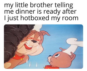Tom and Jerry, Dank Memes, and Little Brother: my little brother telling  me dinner is ready after  just hotboxed my room I loved tom and jerry so much and still do