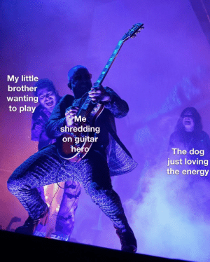 More of the best memes at http://mountainmemes.tumblr.com: My little  brother  wanting  to play  Me  shredding  on guitar  hero  The dog  just loving  the energy More of the best memes at http://mountainmemes.tumblr.com