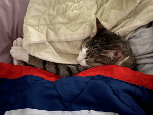 My little guy tucked in for a nap.: My little guy tucked in for a nap.