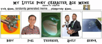 pony: MY LITTLE PONY CHARACTER AGE MEME  CREATED BY TARITOONS  YOUR NAME: randomly generated meme CHARACTERS NAME:  SENiOR.  BABY  TEENAGER  ADULT  FoAL