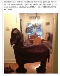 Costume goals | (Check link in bio!) funnyfriday funnytumblr tumblr funny tumblrtextpost funnytumblrtextpost funny haha humor hilarious: my little sister and her friend said they were going as horses  for halloween and i thought they meant that they were gonna  wear like tails or whatever and THEN I GET THIS FUCKING  PICTURE Costume goals | (Check link in bio!) funnyfriday funnytumblr tumblr funny tumblrtextpost funnytumblrtextpost funny haha humor hilarious