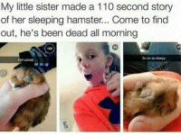 so sleepy: My little sister made a 110 second story  of her sleeping hamster... Come to find  out, he's been dead all morning  108  So so so sleepy  Fell asleep