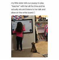 """God, Teacher, and Puppy: my little sister tells our puppy to play  """"teacher"""" with her all the time and he  actually sits and listens to her talk and  draw on the white board (': can god bless me with a dog already"""