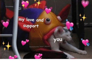 I am loosing to my friend in karma, Rest in pepperonis me: my love and  support  you  ewholesome.heart.memes I am loosing to my friend in karma, Rest in pepperonis me