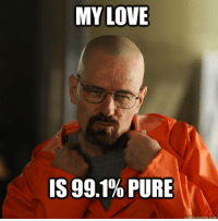 Any breaking bad fans here? Did you enjoy the first episode of season 5 part 2??: MY LOVE  IS 99.1% PURE Any breaking bad fans here? Did you enjoy the first episode of season 5 part 2??