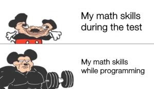 Who else?: My math skills  during the test  My math skills  while programming Who else?